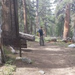 Vogelsang to Merced Lake 2014 015
